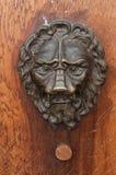 bronze lion on wooden door Royalty Free Stock Images