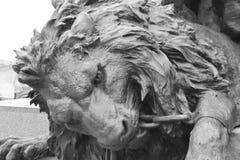 bronze lionstaty Arkivbilder