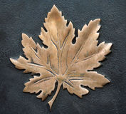 Bronze maple leaf Stock Photos