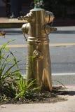 Bronze/ouro da boca de incêndio de fogo Imagem de Stock
