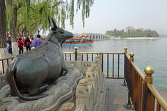 Bronze ox (Tongniu)  in summer palace Stock Photography