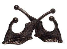 bronze pinne Royaltyfri Fotografi