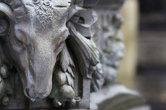 Bronze ram head on blur background Royalty Free Stock Images