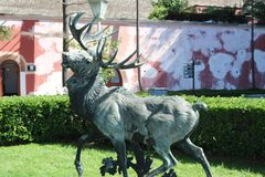 Bronze sculpture of a moose. stock images
