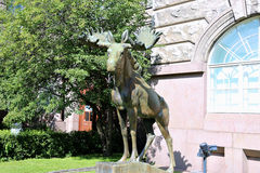 Bronze sculpture of a moose Royalty Free Stock Image