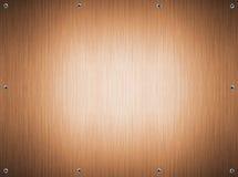 bronze skruv för metallplatta Arkivbild