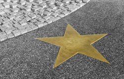 Bronze Star on the granite floor in black and white Stock Photos