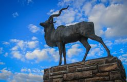 Bronze statue of antelope with large curled horns in the center of the capital of Namibia stock images