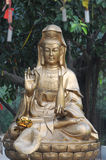 The bronze statue of boddhisattva Royalty Free Stock Photos