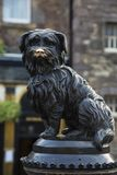 Grey friars bobby famous scottish dog statue. Bronze statue of famous scottish dog in Edinburgh, people rub its nose for luck Stock Images