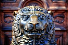 Bronze statue of a lion. Close up stock image