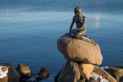 The bronze statue of the Little Mermaid, Copenhagen, Denmark. The bronze statue of the Little Mermaid sits on a rock in the harbour of Copenhagen, Denmark. The Stock Photos