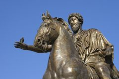 Bronze statue of marco aurelio. In rome with pigeon and blue sky Stock Images