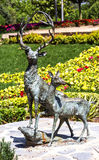 Bronze Statues of Deers Stock Photography