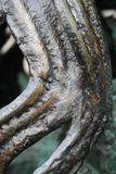 bronze swirlen Arkivbild
