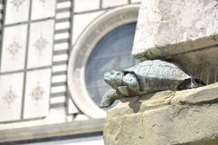 Bronze tortois of the obelisk in Piazza Santa Maria Novella Royalty Free Stock Photography