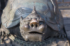 A bronze turtle statue in the Forbidden City, Beijing, China Royalty Free Stock Photos