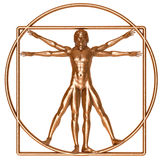 Bronze Vitruvian Man. An antique bronze Vitruvian man isolated on white royalty free stock photos