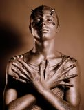 Coloring. Bodyart. Bronze Painted Man's Body in Shadow. Grace Royalty Free Stock Image