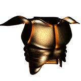Bronzerüstung stockbilder