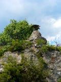 Bronzestatue des Adlers auf Berg im Wald Stockbilder