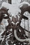 Bronzesteinbockzahl im Schnee lizenzfreie stockfotografie