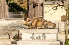 Bronzestierstatue in Dazaifu-Schrein in der Präfektur Fukuoka lizenzfreie stockfotos