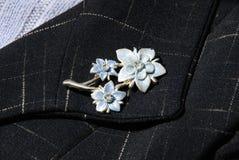 brooch стоковая фотография rf