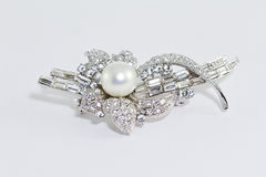 Brooch. The women used brooches fashion Royalty Free Stock Image