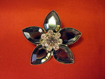 Brooch stock images
