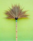 brooch Стоковое Фото