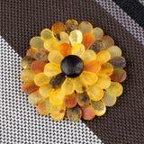 Brooch ambrato Fotografia Stock Libera da Diritti
