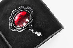 Brooch in a box Royalty Free Stock Image