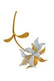Brooch dourado com diamantes Fotografia de Stock