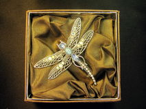 Brooch dragon - fly royalty free stock photos