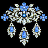 Brooch. With a floral design of diamonds and sapphires Stock Images