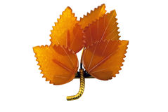 Free Brooch From Amber Stock Image - 14600581