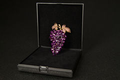Brooch in a gift box. Grape cluster shaped brooch in a black gift box Royalty Free Stock Photography