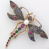 Brooch Jeweled libellula Immagine Stock