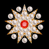 Brooch star Stock Image