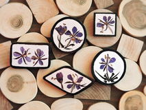 Brooch on wooden background Stock Image