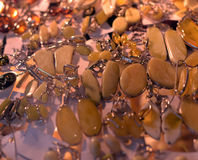 Brooches and rings made of amber Royalty Free Stock Images