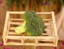 Broocoli 库存照片