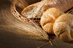Brood Stock Foto's