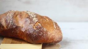 Brood stock videobeelden