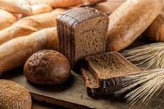 Brood Stock Foto
