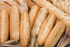Brood & tarwe Stock Afbeelding