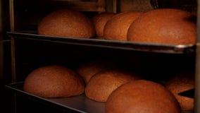 Brood in de oven wordt gekookt die De bakkerij van het brood stock video