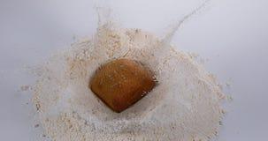 Brood die in Bloem vallen stock video