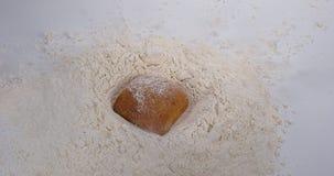 Brood die in Bloem vallen stock videobeelden